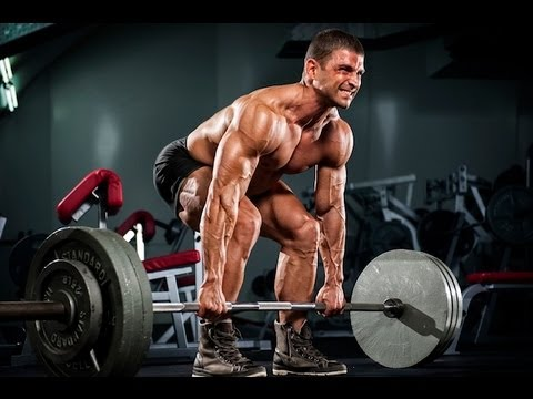 Power Hypertrophy Upper Lower (PHUL) Workout Routine