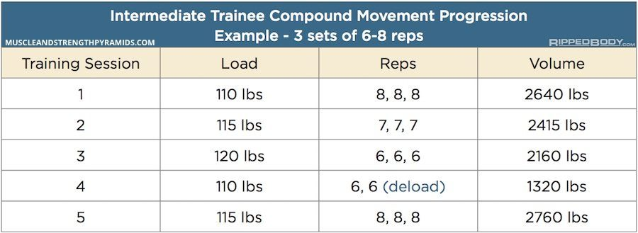 Intermediate Bodybuilding Compound Movement Progression