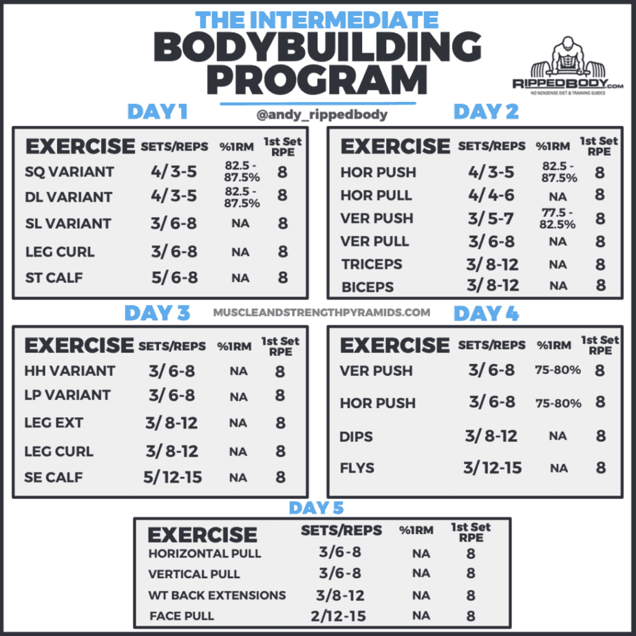 Intermediate Bodybuilding Program Summary