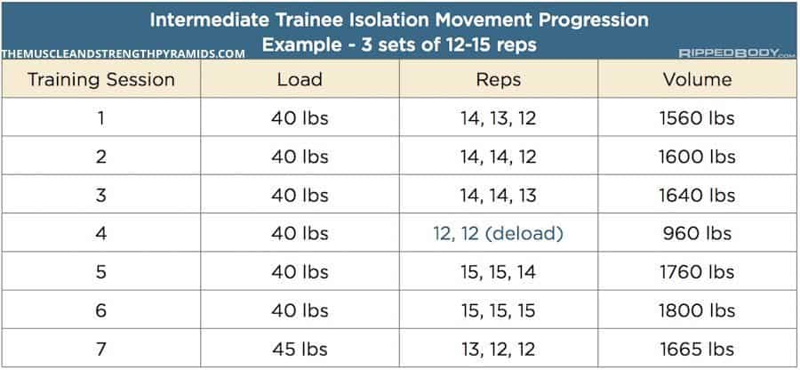 intermediate bodybuilding program accessory progression example