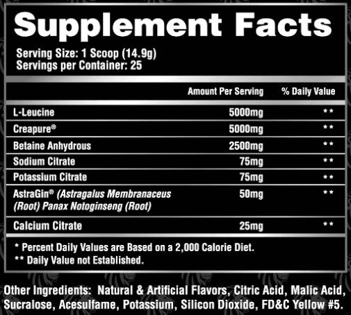 Alpha Lion Superhuman Post Workout Supplement